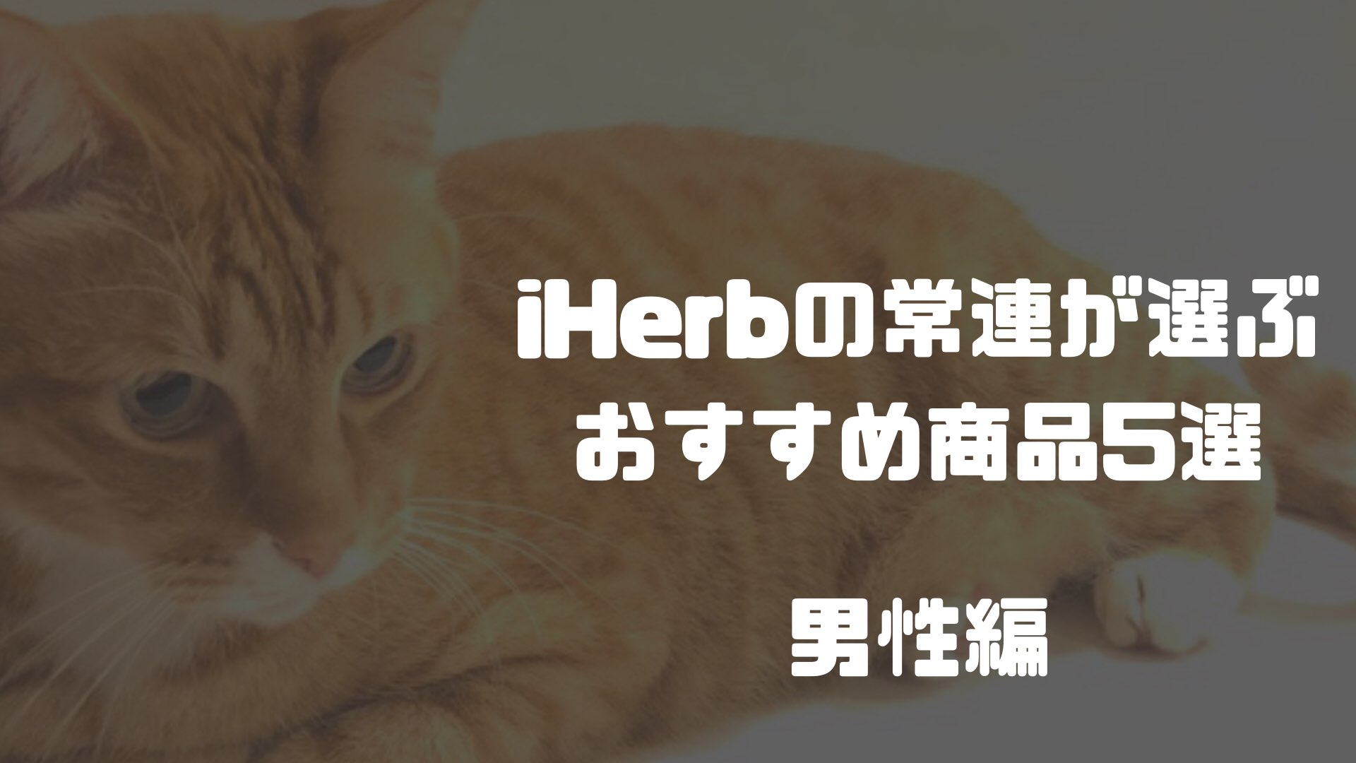 Iherb(アイハーブ)の常連が選ぶおすすめ商品5選 男性編